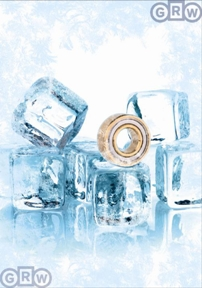 GRW Extreme Precision Bearing for Extreme Harsh Corrosive Environments Cold Low Temperatures