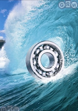 GRW Extreme Precision Bearing for Extreme Harsh Corrosive Environments Fresh Salt Water
