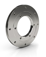 Kaydon Thin Turntable Bearing